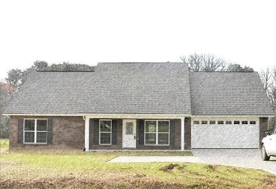 Maryville Single Family Home For Sale: 538 Valley Vista Way