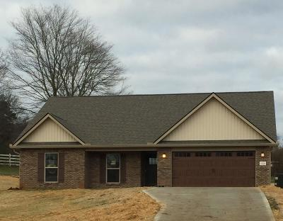 Friendsville Single Family Home For Sale: 2920 Big Springs Rd