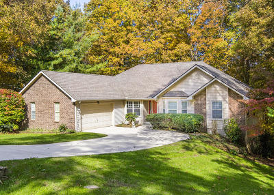 Fairfield Glade Single Family Home For Sale: 113 Dovenshire Drive