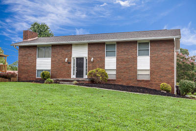 Knoxville Single Family Home For Sale: 908 Tanforan Drive