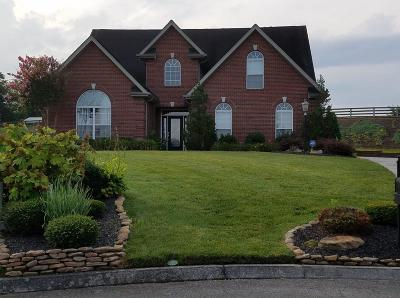 Knoxville Single Family Home For Sale: 2500 Wild Fern Lane
