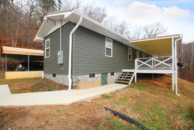 Claiborne County Single Family Home For Sale: 245 Edwards Leach Lane