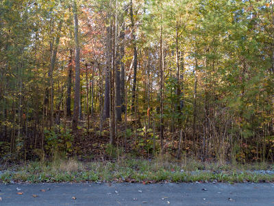 Maryville Residential Lots & Land For Sale: Jericho Rd