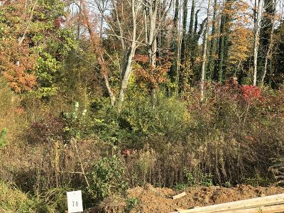 Anderson County Residential Lots & Land For Sale: 117 Creek View Court