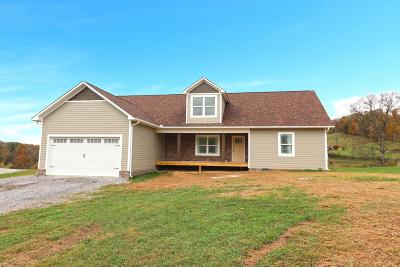 Grainger County Single Family Home For Sale: 445 River Stone Drive