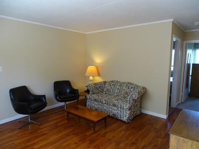 Knoxville Condo/Townhouse For Sale: 2718 Painter Ave #Apt C111