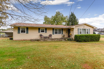 Friendsville Single Family Home For Sale: 3939 Big Springs Ridge Rd