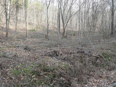New Tazewell Residential Lots & Land For Sale: Lot 730 Clear Water Rd
