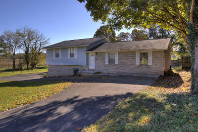 Lenoir City Single Family Home For Sale: 121 Benjamin Drive
