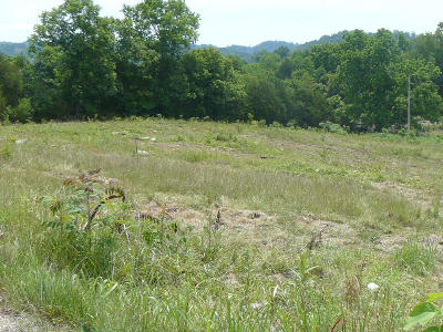 Tazewell Residential Lots & Land For Sale: Lot 41 Cartwright Circle