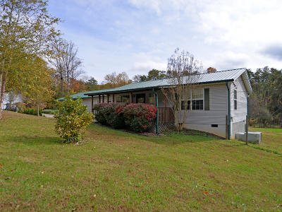 Knoxville Single Family Home For Sale: 9236 Brock Rd