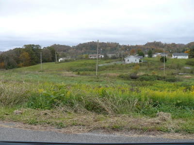 Tazewell Residential Lots & Land For Sale: Lot 29 Leabow Hollow Rd