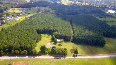 Blount County Single Family Home For Sale: 6212 Nine Mile Rd