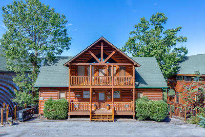 Sevierville Single Family Home For Sale: 946 Black Bear Cub Way Way