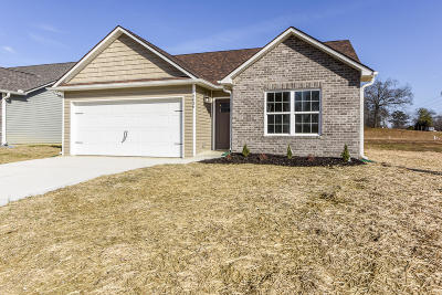 Knoxville Single Family Home For Sale: 3636 Flowering Vine Way