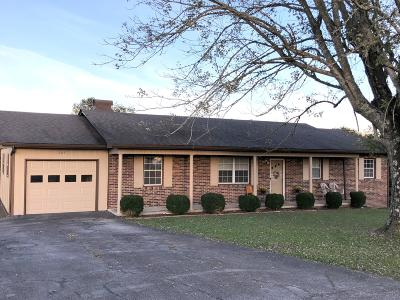Single Family Home For Sale: 205 E Crestview Drive