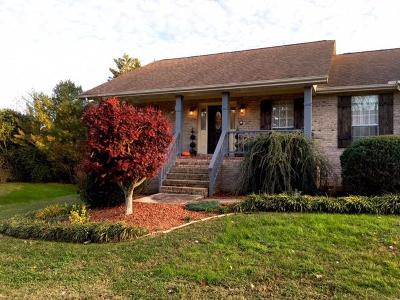 Maryville Single Family Home For Sale: 2222 Remington Park Drive