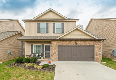 Knoxville Single Family Home For Sale: 2747 Silent Springs Lane