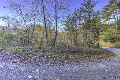 Tazewell Residential Lots & Land For Sale: 1405 Clinch River Rd