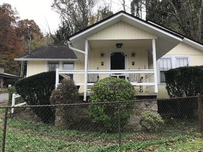 Gatlinburg Single Family Home For Sale: 214 Silverbell Lane