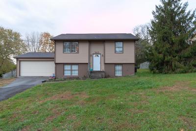 Corryton Single Family Home For Sale: 7417 Maverick Lane