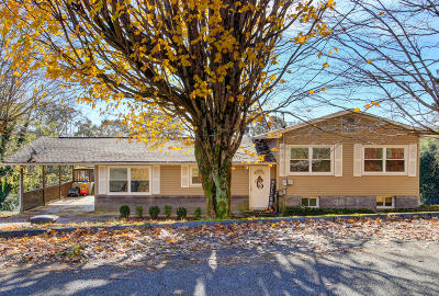 Loudon Single Family Home For Sale: 561 Robinson Drive