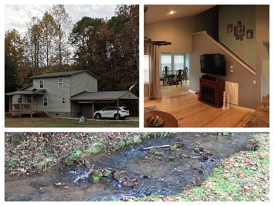 Tellico Plains Single Family Home For Sale: 288 Jd Farm Rd.