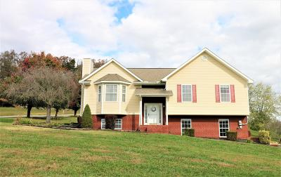 Single Family Home For Sale: 659 Holston Shores Drive