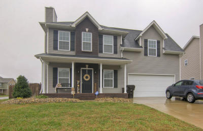 Knoxville Single Family Home For Sale: 2209 Hatties Place Rd