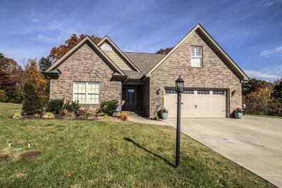 Knoxville Single Family Home For Sale: 3350 Parrish Hill Lane