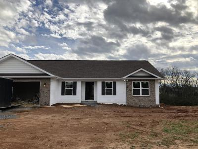 Dandridge, Sevierville Single Family Home For Sale: 213 Florence Circle