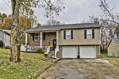 Knoxville Single Family Home For Sale: 728 Summerdale Drive