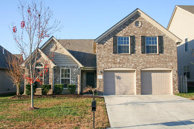 Knoxville Single Family Home For Sale: 1715 Sawgrass Rd