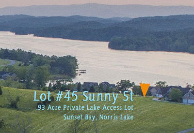 Residential Lots & Land For Sale: Lot 45 Sunny St