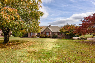 Maryville Single Family Home For Sale: 448 Smoky View Estates Drive