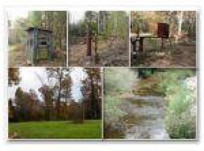 Residential Lots & Land For Sale: 251.98 Charley Hull Loop Rd
