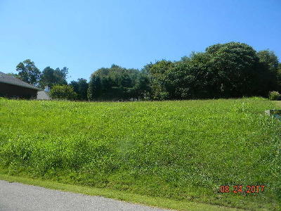 Greenback Residential Lots & Land For Sale: 165 Southcove Drive