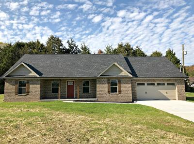 Dandridge, Sevierville Single Family Home For Sale: 546 Highway 139 Hwy