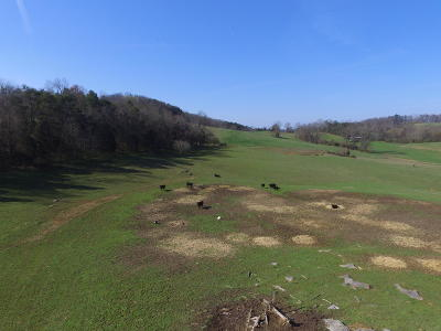 Russellville, Whitesburg Residential Lots & Land For Sale: 1803 Needmore Rd