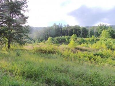 Rogersville Residential Lots & Land For Sale: 00 High Rock Rd