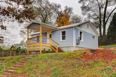 Knoxville Single Family Home For Sale: 237 Maryville Pike