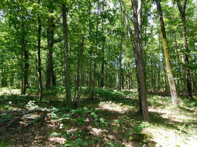 Cumberalnd Cove, Cumberland Cove, Cumberland Cove ., Cumberland Cove, A Vast Wooded Subdivision On The Plateau Between Cookeville And, Cumberland Cove Iv, Cumberland Cove Unit, Cumberland Cove Unit 2, Cumberland Cove Unit Lii Residential Lots & Land For Sale: Poston Drive Drive #3