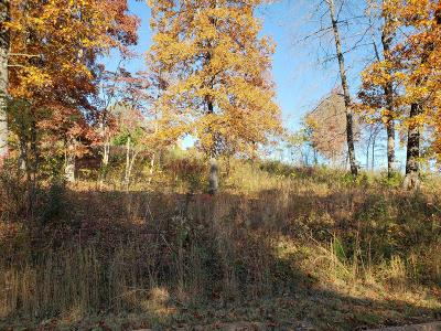 Grainger County Residential Lots & Land For Sale: Lot 17 Aidans Tr