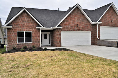Sevierville Condo/Townhouse For Sale: 1117 Fellin View Way