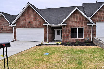Sevierville Condo/Townhouse For Sale: 1119 Fellin View Way
