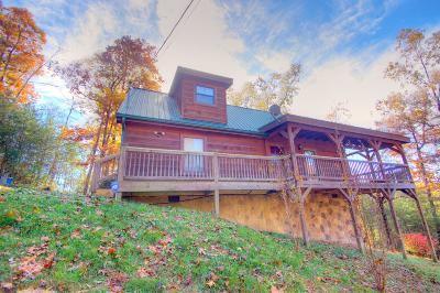 Sevier County Single Family Home For Sale: 2016 Bird Ridge Rd