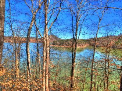 Claiborne County Residential Lots & Land For Sale: Lots 33/34 Mountain Shores Drive