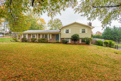 Knox County Single Family Home For Sale: 920 Suwannee Rd