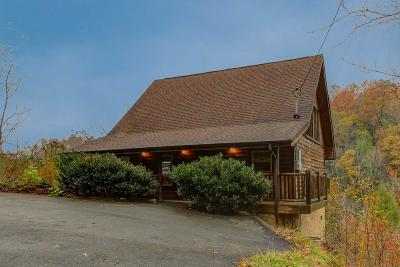 Sevier County Single Family Home For Sale: 909 Grey Fox Tr
