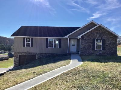 New Tazewell TN Single Family Home For Sale: $179,900